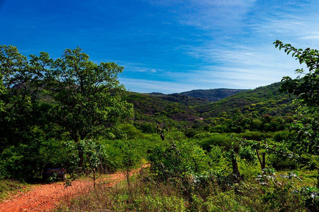 Trilha Serra do Catuaba de Paramirim