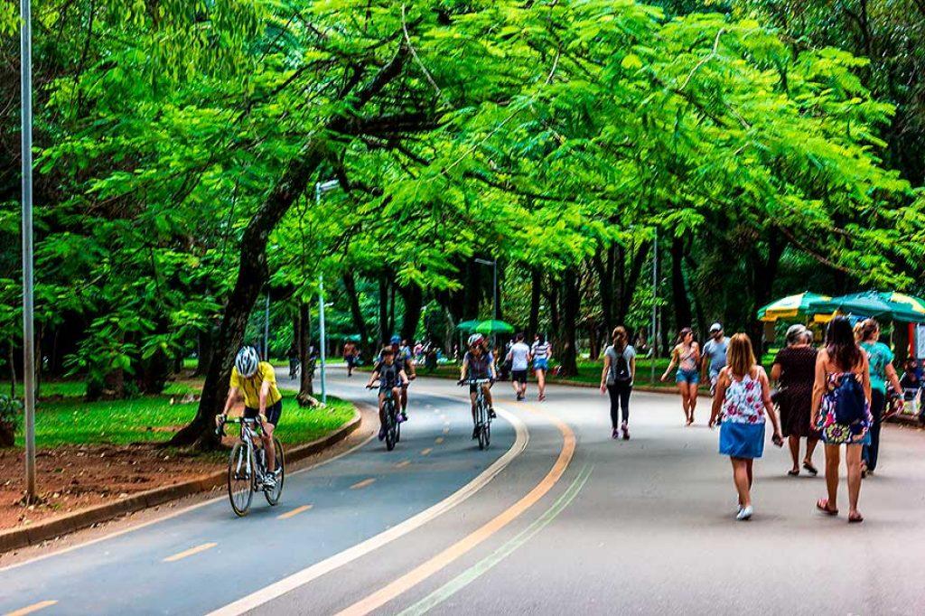 Ciclo-Faixas do Parque Ibirapuera