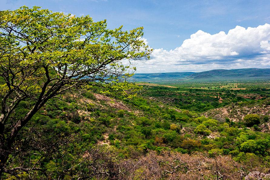 Serra do Catuaba - Paramirim